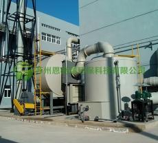 沸石转轮+催化燃烧塔(抽真空废气处理)